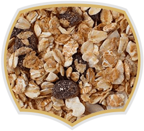 Muesli with fruits, 20% - Gama Food