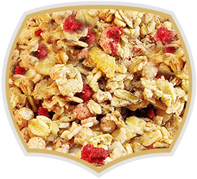 Muesli with red fruits. Gama food