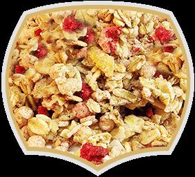 Мюсли с червени плодове, Gama Food