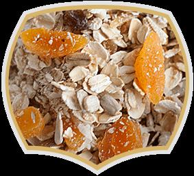 Мюсли с жълти плодове, Gama Food