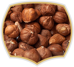 Raw hazelnuts for bakaries, Gama Food