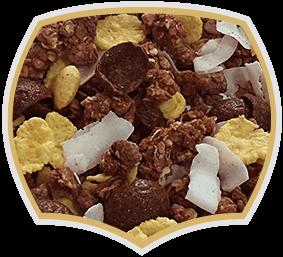 Chocolate crunchy muesli with coconuts. Gama Food