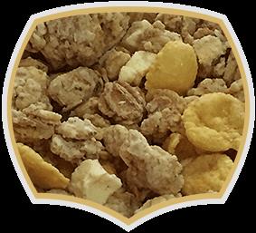 Хрупкаво мюсли ябълка и канела, Gama Food