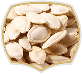 Roasted pumpkin seeds. Nuts from Gama Food