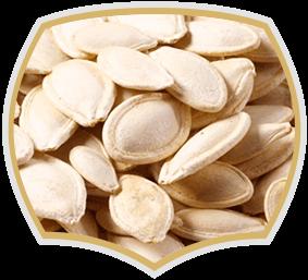Печени тиквени семки, Gama Food