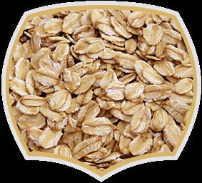 Oat flakes for food industry, muesli, bakaries. Gama food