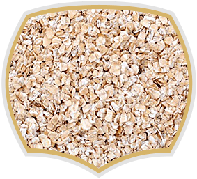 Oat flakes fine for food industry. Gama Food