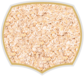 Oat bran for muesli. Gama Food