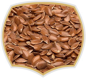 Linseed with high quality. Gama food