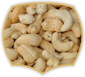 Cashew, raw nuts. Gama Food