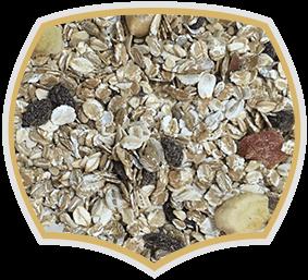 Мюсли с 30% плодове, Gama Food