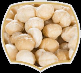 Macadamia, raw nuts. Gama Food