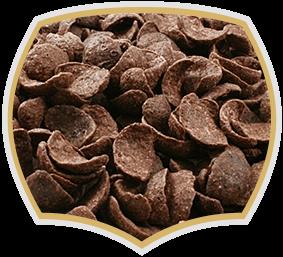 Корнфлейкс шоколадови миди, Gama Food