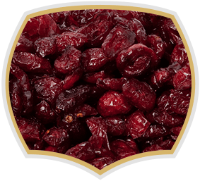 Dried cranberry, natural product from Gama Food
