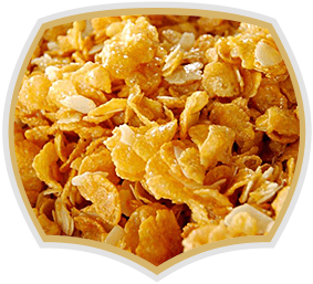 Cornflakes honey and coconut, Quality product from Gama Food