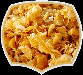 Корнфлейкс мед и кокос. Производство на зърнени закуски Gama Food