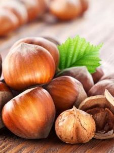 Hazelnuts for healthy body. Gama Food